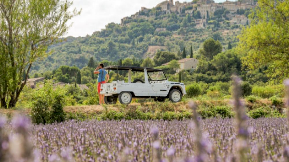 INSTAMEET de Luberon Coeur de Provence & Agence la belle vie