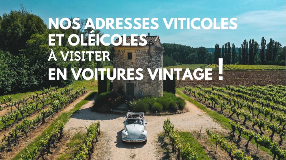 Nos adresses viticoles et oléicoles à visiter en voitures vintage