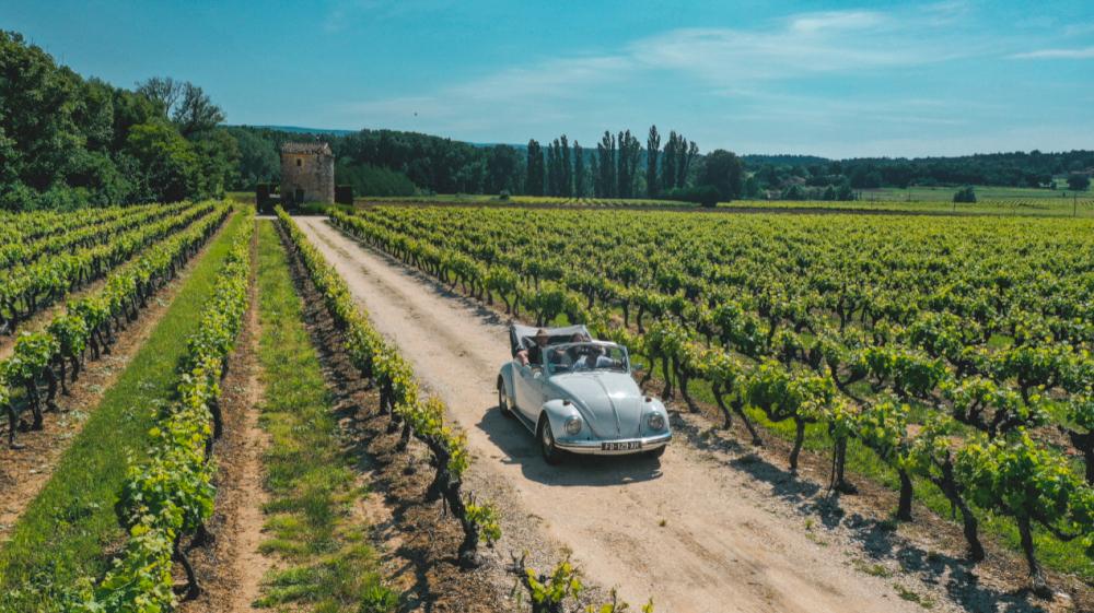 Le fascinant week-end Vignobles & Découvertes