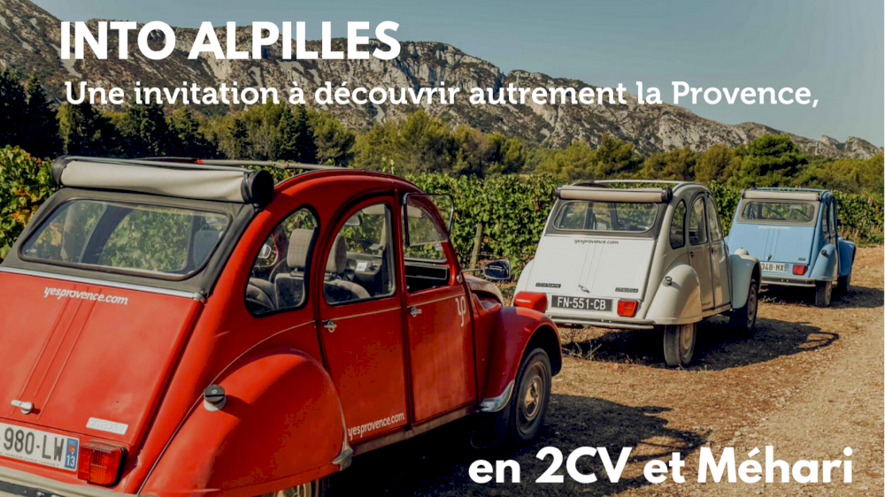 Into Alpilles : Invitation à découvrir autrement la Provence, en deux chevaux et Méhari