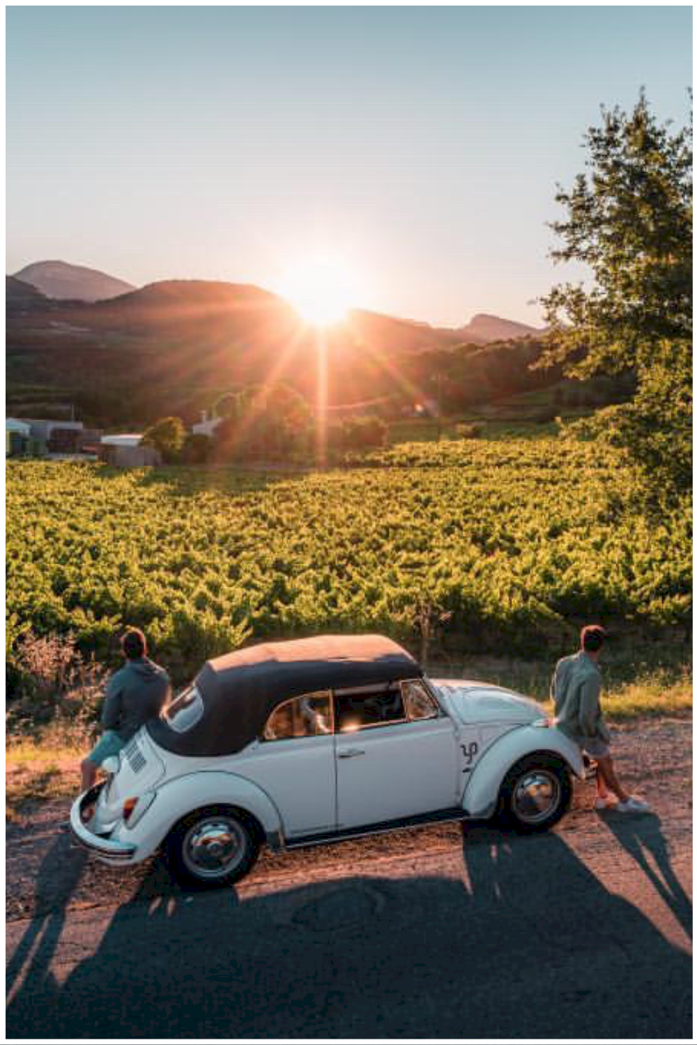 Location Coccinelle cabriolet Provence