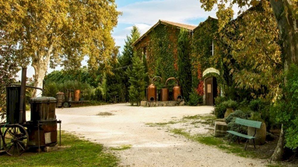 Tour des Musées en 2cv en Provence