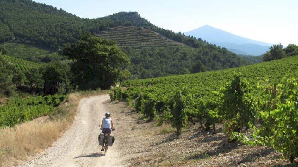Escapade loisirs et activités en Provence avec la location de Méhari en Provence